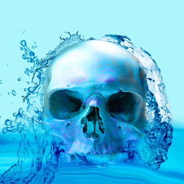 'Skull in Water' A work of art of a skull in water