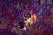 "New artwork for sale! - "" Cat Mieze Siam Siamese Cat  by PixBreak Art "" - http://ift.tt/2vyUlrW"