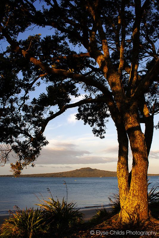 Rangitoto Island sunset from Narrowneck Beach, Auckland | © Elyse Childs Photography