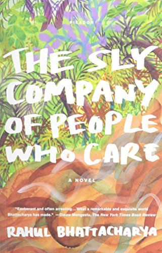 The Sly Company of People Who Care: A Novel by Rahul Bhattacharya http://www.amazon.com/dp/B00C2I97B6/ref=cm_sw_r_pi_dp_AfkEwb0674EJT