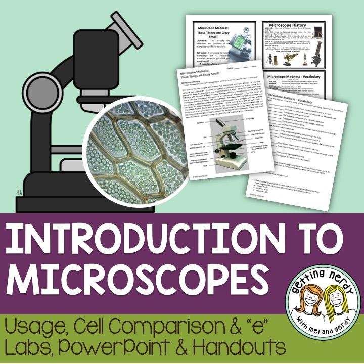 CREATING MICROSCOPIC SLIDES Fun Kids Science Experiments ...