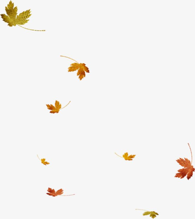Falling Leaves Leaves Falling Down Floating Elements Png