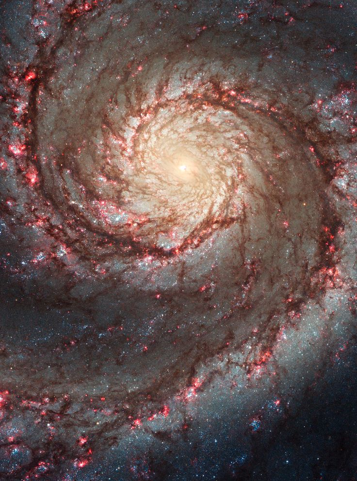 This image by NASA's Hubble Space Telescope shows a face-on view of the Whirlpool Galaxy (M51). Taken in visible light, it highlights the attributes of a typical spiral galaxy, including graceful, curving arms, pink star-forming regions, and brilliant blue strands of star clusters.