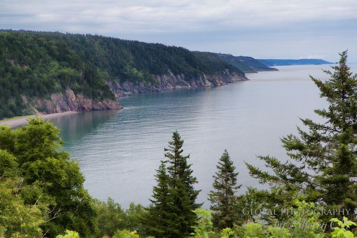 8 Ways to Experience the Bay of Fundy - Fundy National Park views