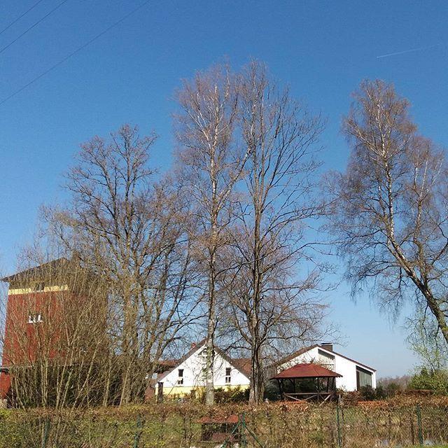 An der Pfütz in Neusatz, Bad Herrenalb. #badherrenalb #sonntag #sonnenschein #iloveit #süddeutschland #deutschland #gutelaune #germany