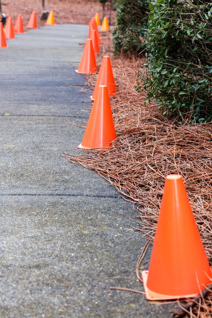 Cones leading up driveway? BG
