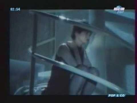 Johnny Hallyday : Je te promets! pascal