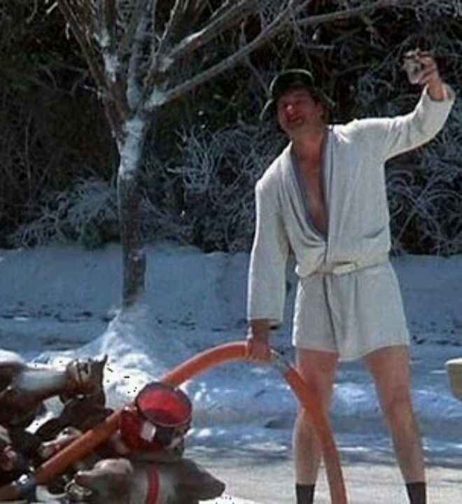 Cousin Eddie is actor Randy Quaid from Texas in National Lampoon's Christmas Vacation Movie 1989, famous scene empty's RV Camper bathroom crapper