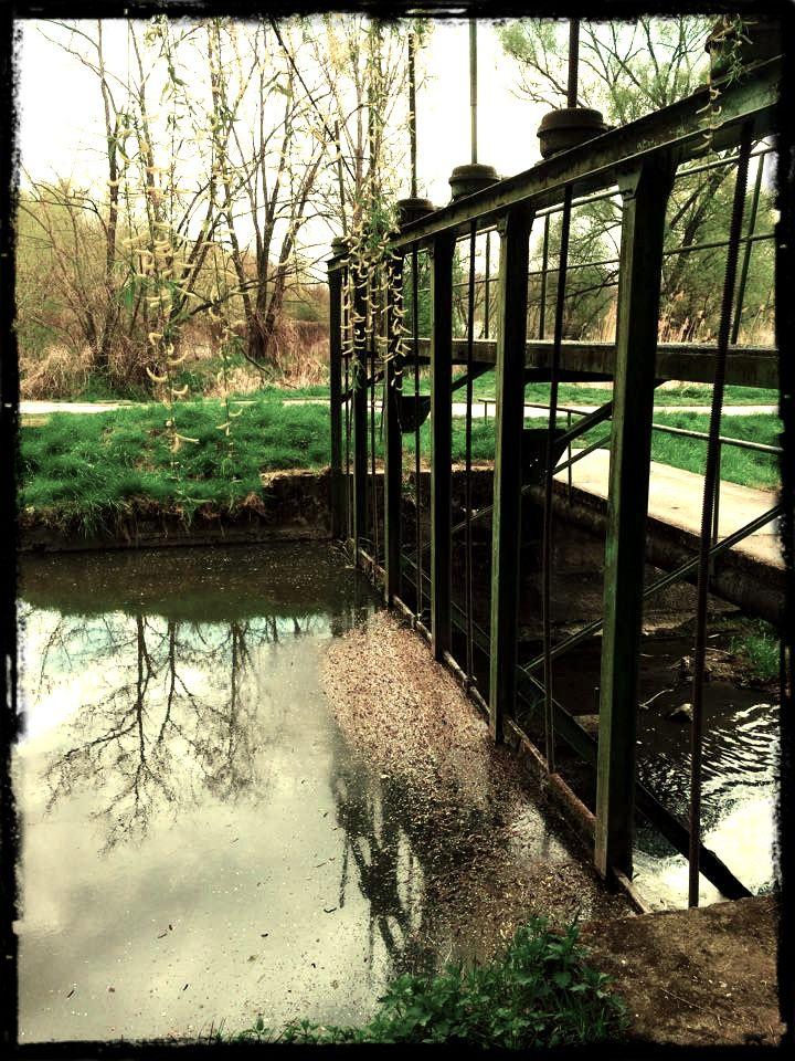 V Hodoníně, na rybnících :) (Autor: Honza)