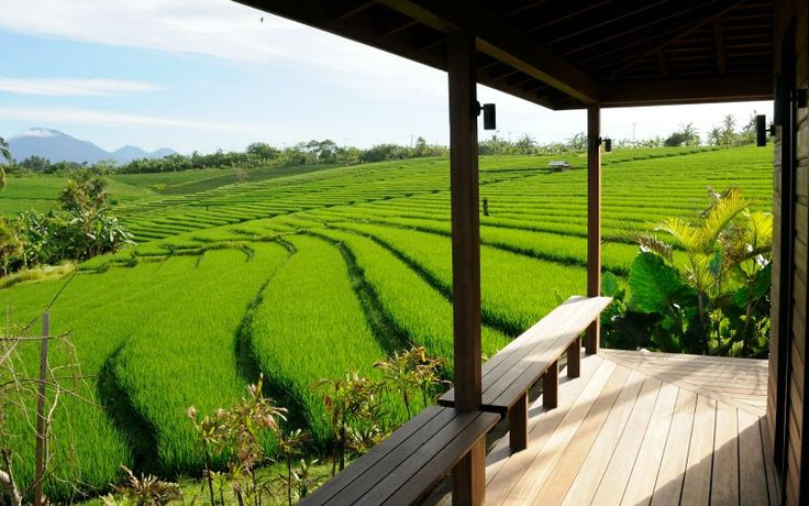 Villa Bulung Daya | 2 bedrooms | Tabanan, Bali #ricefield #swimmingpool #garden #beach #ocean #cliff #villa #bali #holidayvilla