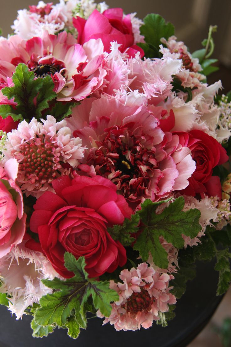 Pink And Red Bouqet With Images Flowers Pink Flower