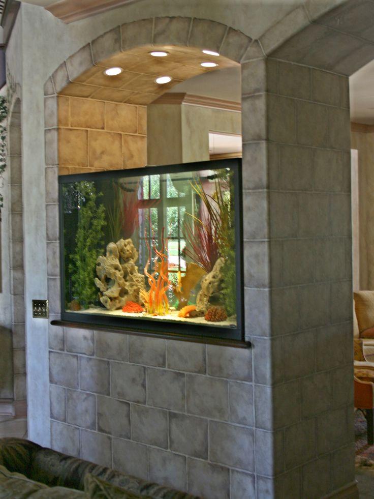 350 gallon water aqaurium...1 fish~2 fish~red fish~blue fish...