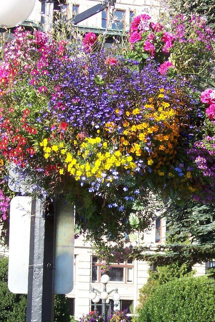 best nederland residence images on pinterest colorado