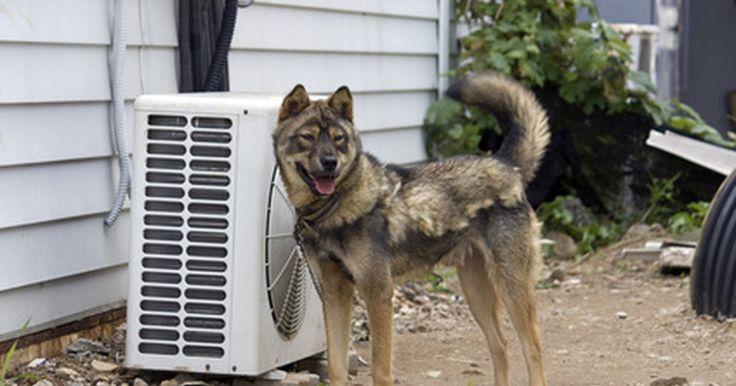 ¿Qué causa que los compresores de los AC hogareños hagan ruido? . Los acondicionadores de aire varían ampliamente en el nivel de ruido que producen. Si encuentras que tu unidad produce algún ruido en un volumen inusualmente alto o en patrones irregulares, es posible que tengas un problema con el compresor. Determina si los ruidos vienen del compresor de tu aire acondicionado, hay varias explicaciones posibles ...