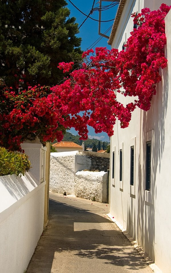 Spetses Island, Saronic, Greece is where I wanna go!!