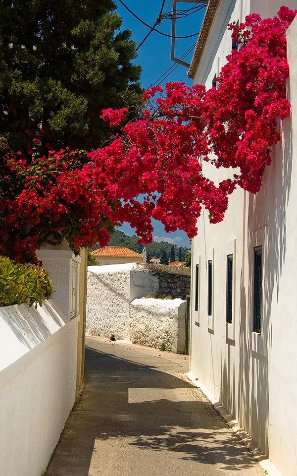 Spetses Island, Saronic, Greece