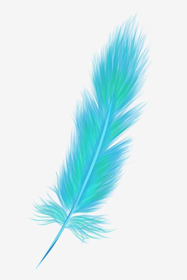 Bulu Clipart Cantik Bulu Merak Warna Bulu Clipart Merak Clipart Cantik Sayap In 2021 Feather Background Colorful Feathers Feather