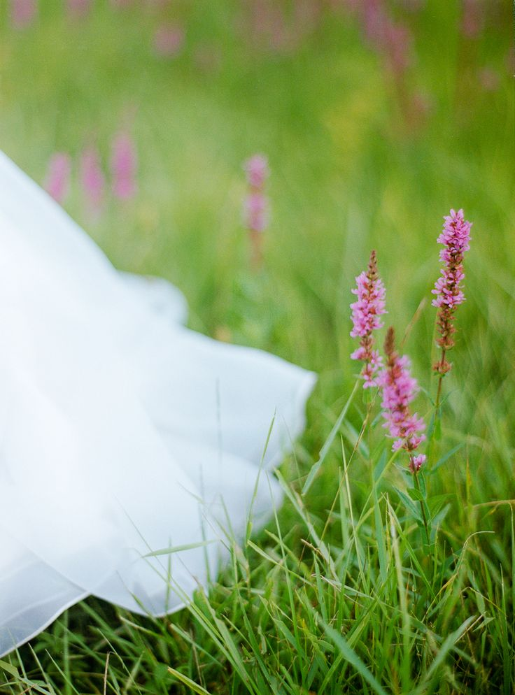 weddingdress meets flowers - Fine Art Hochzeitsfotografie   DUJMOGRAPHY · Fine Art Hochzeitsfotografie   DUJMOGRAPHY  Fine Art Wedding Photography  Österreich  Burgenland  Wien