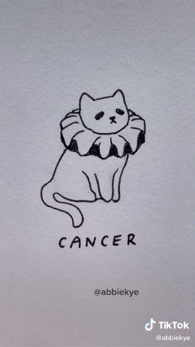 Tiktok Mini Drawings Cat Tattoo Designs Sketch Book