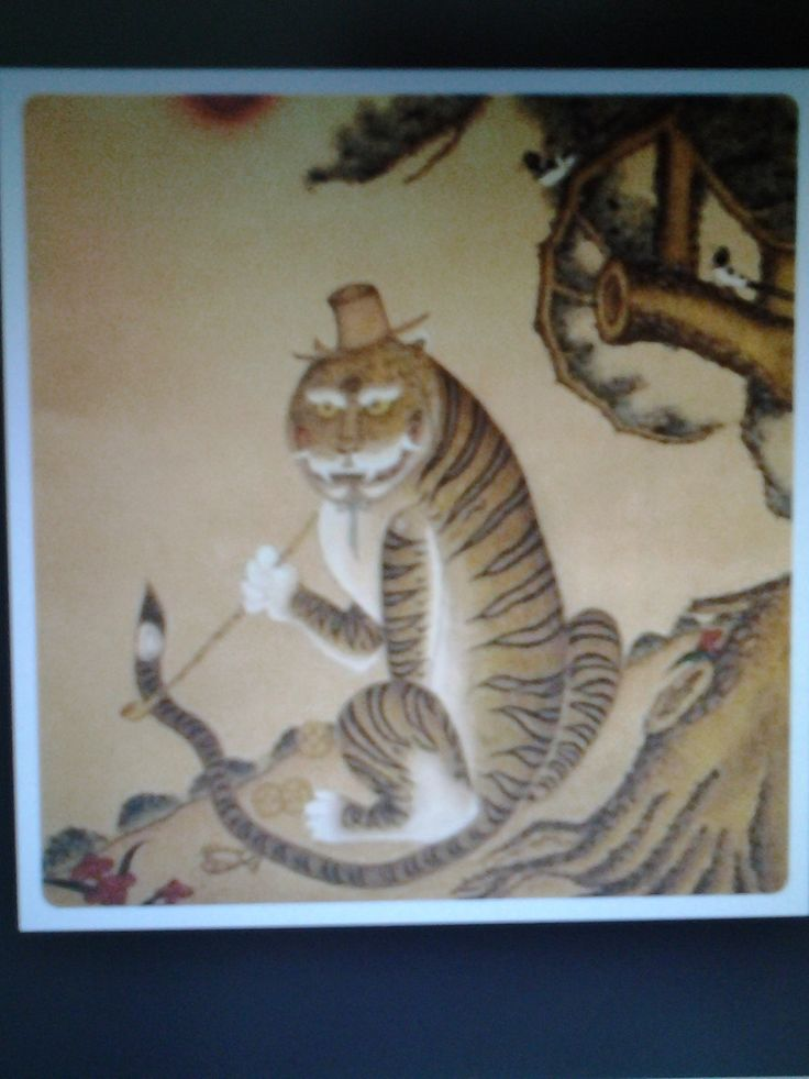 22 best images about korean tigers on pinterest