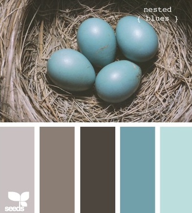 robin's egg blue hues | perfect color combination for the master bedroom