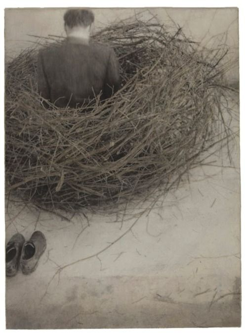 Robert & Shana ParkeHarrison  Study of Nest (1994)