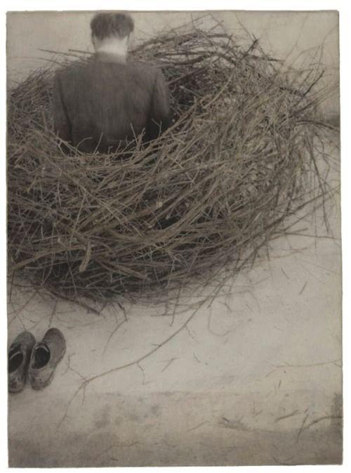 Robert & Shana ParkeHarrison  Study of Nest (1994)Shana Parks, Inspiration, Art, Shana Parkeharrisonstudi, Surrealism Photography, Nests 1994, Robertshana Parkeharrison, Robert Shana, Birds