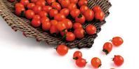 How to Can Homegrown Cherry Tomatoes | eHow