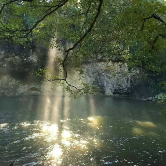 Nature Aesthetic, Scenery