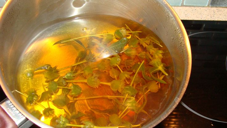 Greek mountain tea. Boil - don't pour it over! http://www.spartanatura.com/about-greek-mountain-tea
