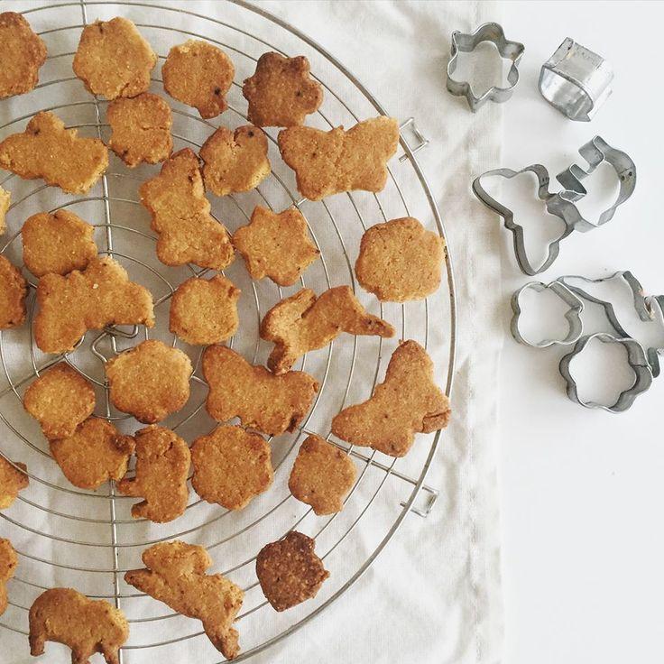 Ti Készítettétek Recept     (A recept készítője: Lilik Fanni )    Diétás sajtos kréker    Sajtos kréker recept (gluténmentes, to...
