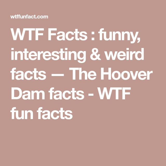 WTF Facts : funny, interesting & weird facts — The Hoover Dam facts - WTF fun facts