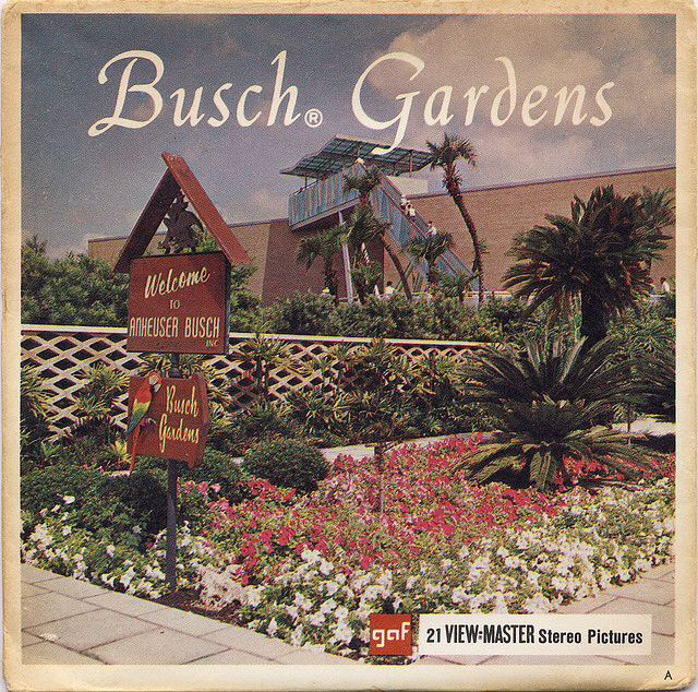 17 Best Images About Busch Gardens Tampa Bay Fl On
