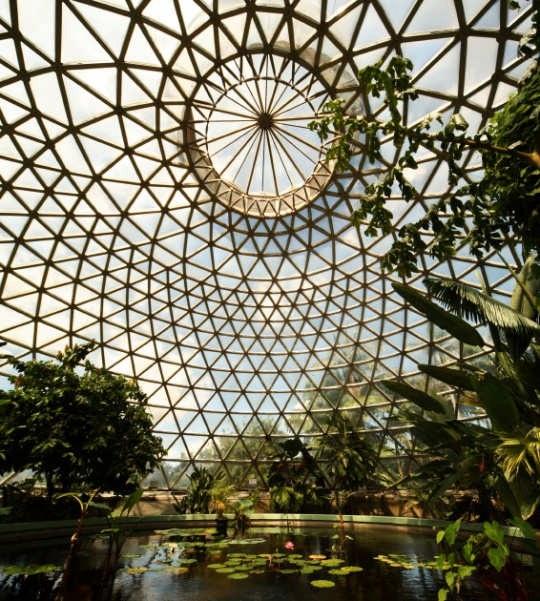 Brisbane- Botanical gardens...Queensland Australia.