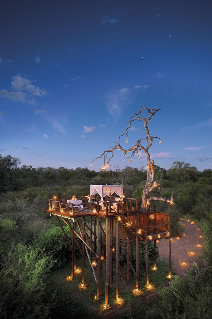Treehouse Lodge in Kruger Game Reserve, South Africa