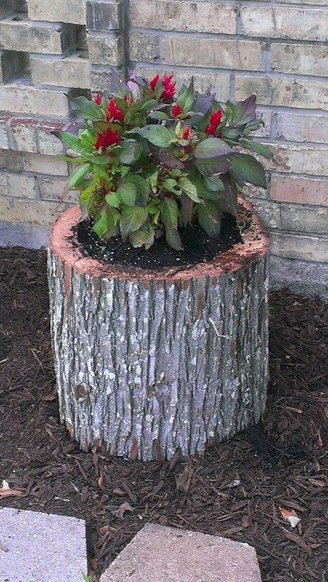 11 Best Images About Tree Stump Flower Pots On Pinterest