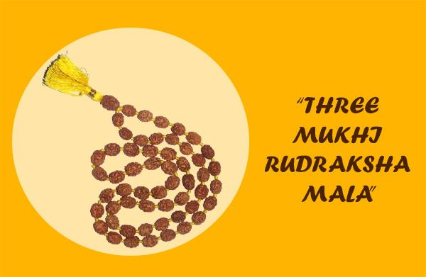 THREE MUKHI RUDRAKSHA MALA : This rudraksha mala contains all the beads of javanese 3 mukhi rudraksha. This is also called AGNI MALA. As the Agni consumes everything and remains pure ,the wearer of 3 mukhi mala also gets free from sins of past life.This mala is also very effective for people who are suffering from inferiority complex,fear stricken, and suffer from low self esteem. http://lnkd.in/eQpFmW9