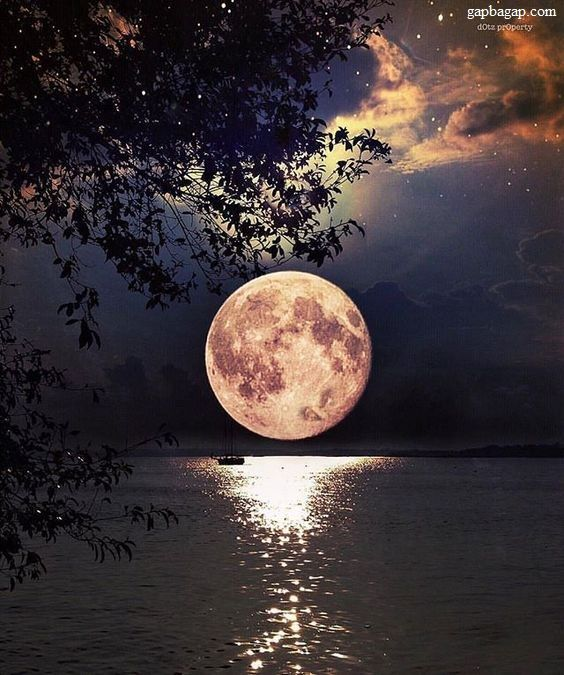 Amazing Picture Of Moon