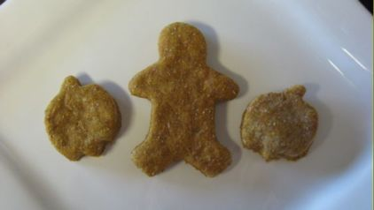 pumpkin dog treats- i made these for the dogs and added banana and peanut butter