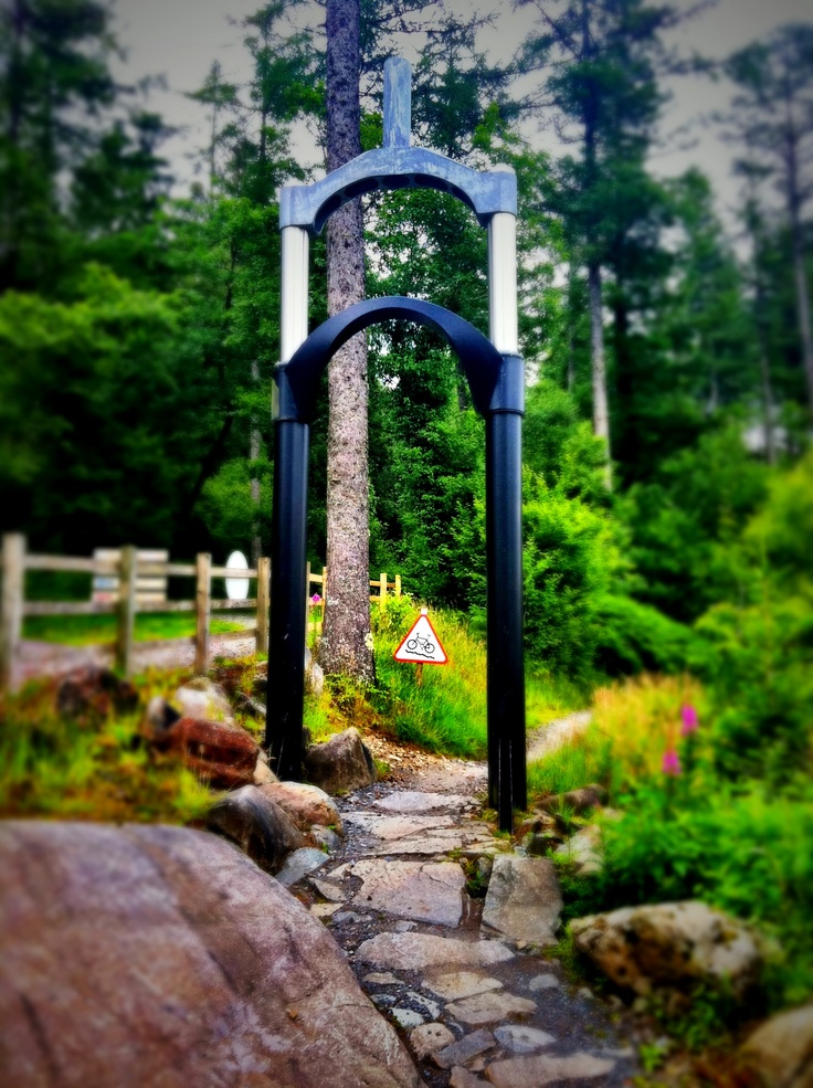 Awesome entrance to the Temtiwr mountain bike trail in North Wales at the Coed y Brenin centre
