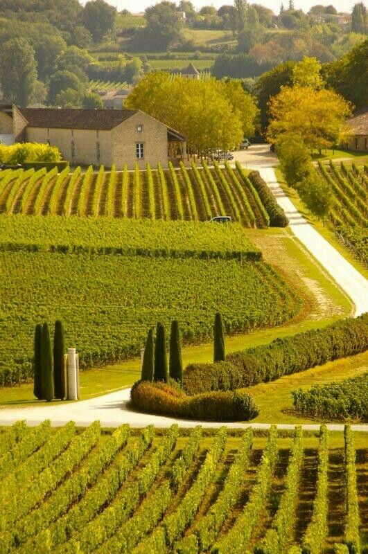 Bordeaux, France...beautiful wine country