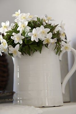 I have an antique pitcher similar to this so now I just need some white flowers!