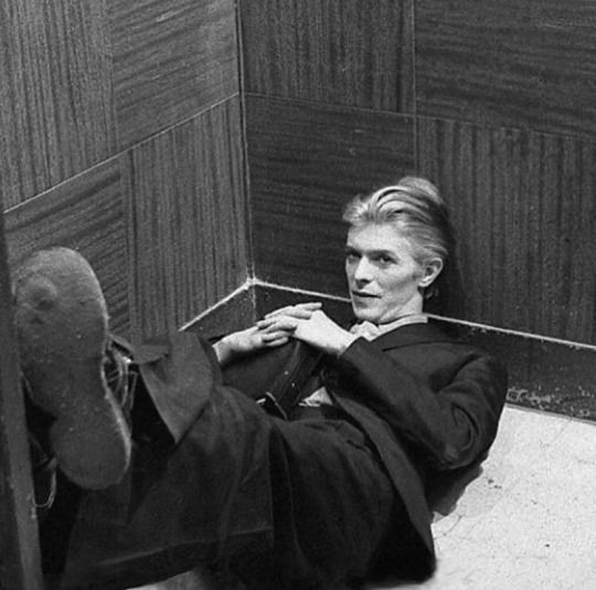Lovely Bowie