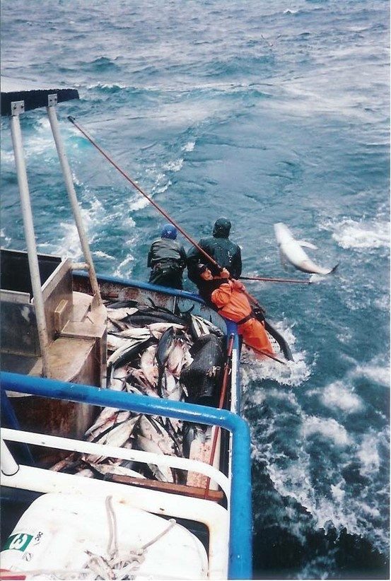 27 best images about commercial fishing on pinterest for Tuna fishing oregon