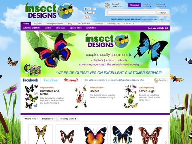 Vivid and colourful online shop design for the exotic insect and butterfly specimens of @Insect Designs