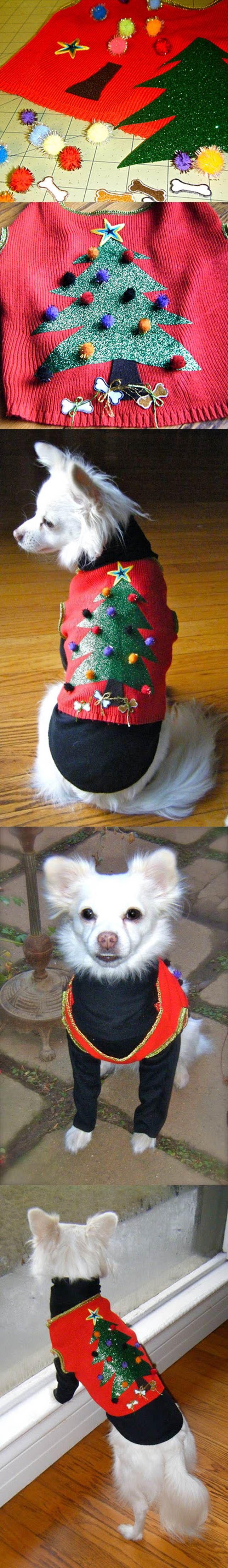 DIY do Natal do cão da camisola 2