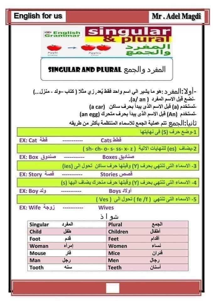 اساسيات اللغة الانجليزية سنة اولى متوسط Ency Education الموقع الاول للدراسة في الجزائر Plurals Singular And Plural Education
