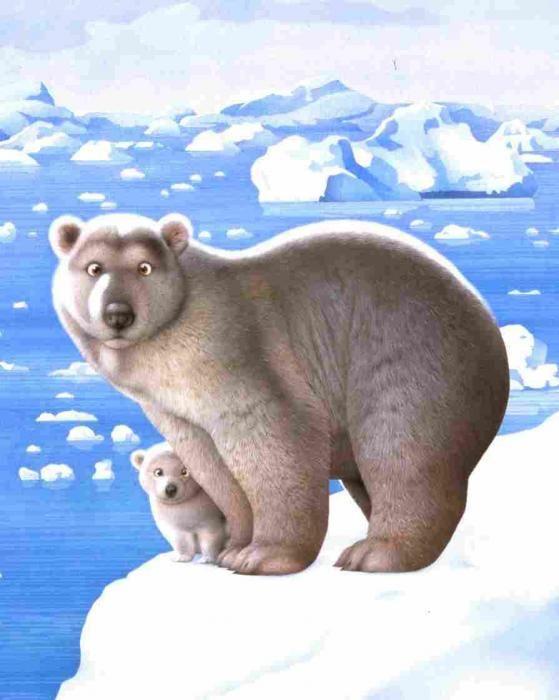 Рисунки белого медведя смешные, открытки