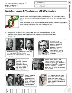 Free DNA worksheet - discovery of DNA. I like this because it explores more scientists than just Watson and Crick!