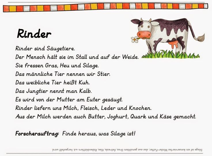 16 best Adjektiv images on Pinterest | German language, Elementary ...